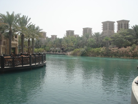 Oasis in Dubai